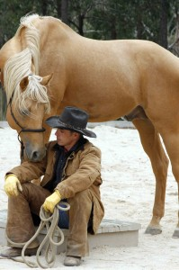 Apache Springs Ranch Equine Therapy Clinic