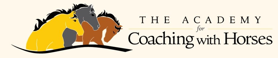 academy_for_coaching_with_horses