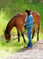 Equine Events – Apache Springs Ranch